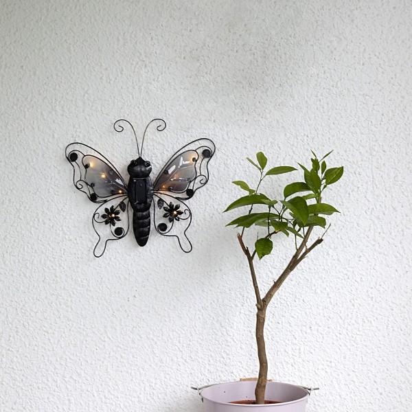 """LED Solar Wanddeko """"Schmetterling"""" - 8 warmweiße LED - H: 34cm - Dämmerungssensor - schwarz"""