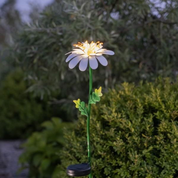 "LED Solarstab ""Gänseblümchen"" - 10 warmweiße Dew Drop LED - H: 77cm - Dämmerungssensor"
