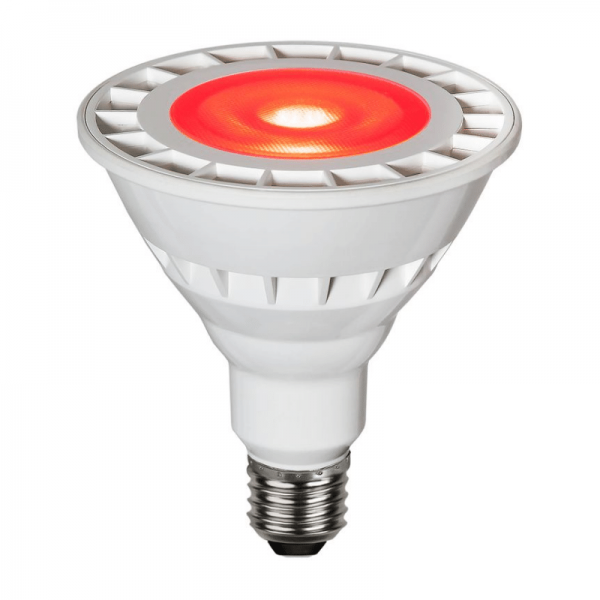 Garten-Spot-Leuchtmittel Rot | LED | Uplight | E27 | PAR38 | 15W | 35°